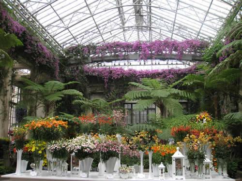 Longwood Gardens Conservatory 2