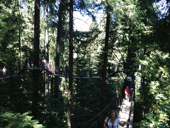 Capilano Suspension Bridge Park Treetop Adventure