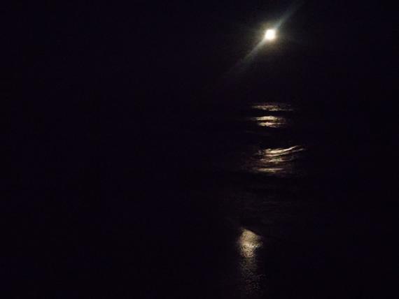 Moonlight beach stroll
