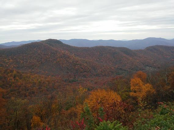 Blue Ridge Parkway foliage