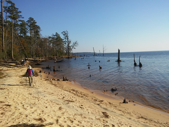 Goose Creek State Park beach