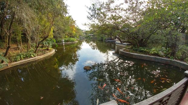 Zhongshan hot springs koi pond