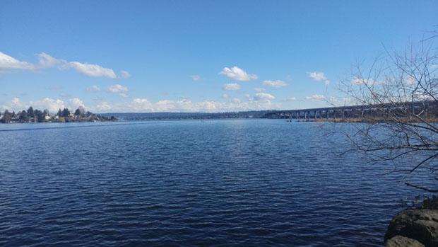 Washington Park Arboretum Lake Washington
