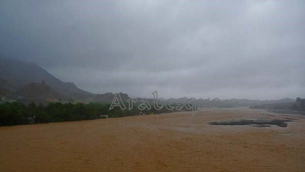 Wadi Fanja on Friday afternoon - a mud coloured river from Cyclone Phet