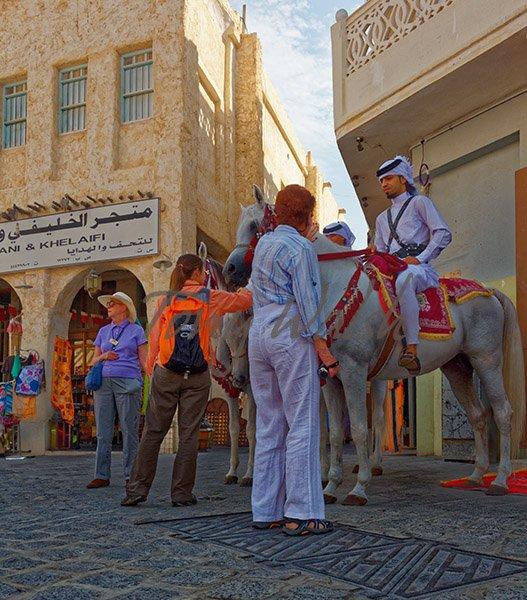 Doha Suq Waqif Qatar Horses