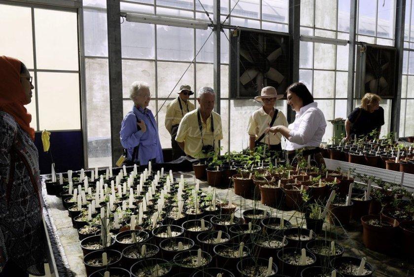 Dr Annette Patzelt at Omans Botanic Garden