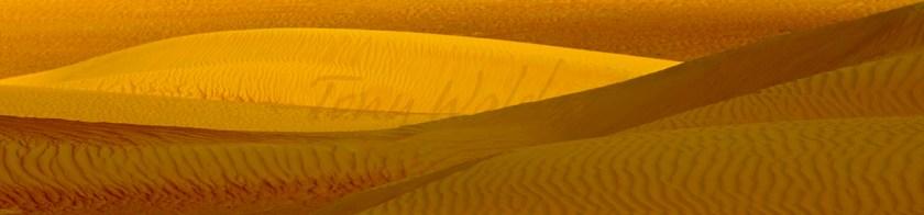 tony walsh sand dunes
