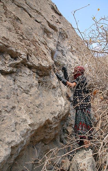 Jabal Samhan Honey Hunt
