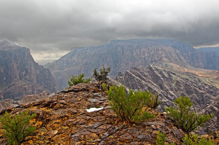 Oman Mountains Rain