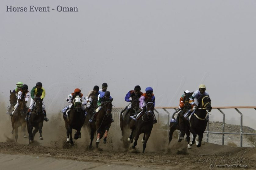 Horse Event -Oman 10 reasons to visit muscat this winter
