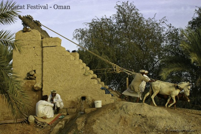 Muscat Festival - Oman 10 reasons to visit muscat this winter