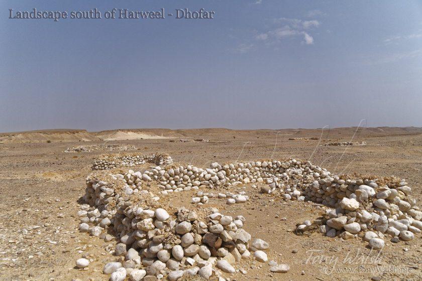 Landscape south of Harweel - Dhofar