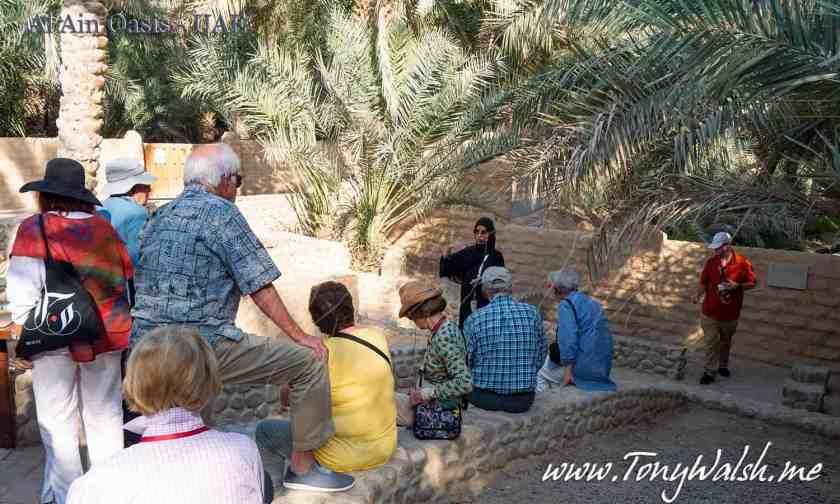 Al Ain Oasis - UAE