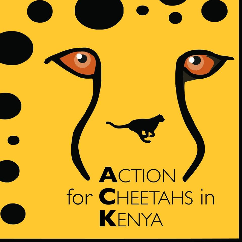 Actions_for_Cheetahs_in_Kenya