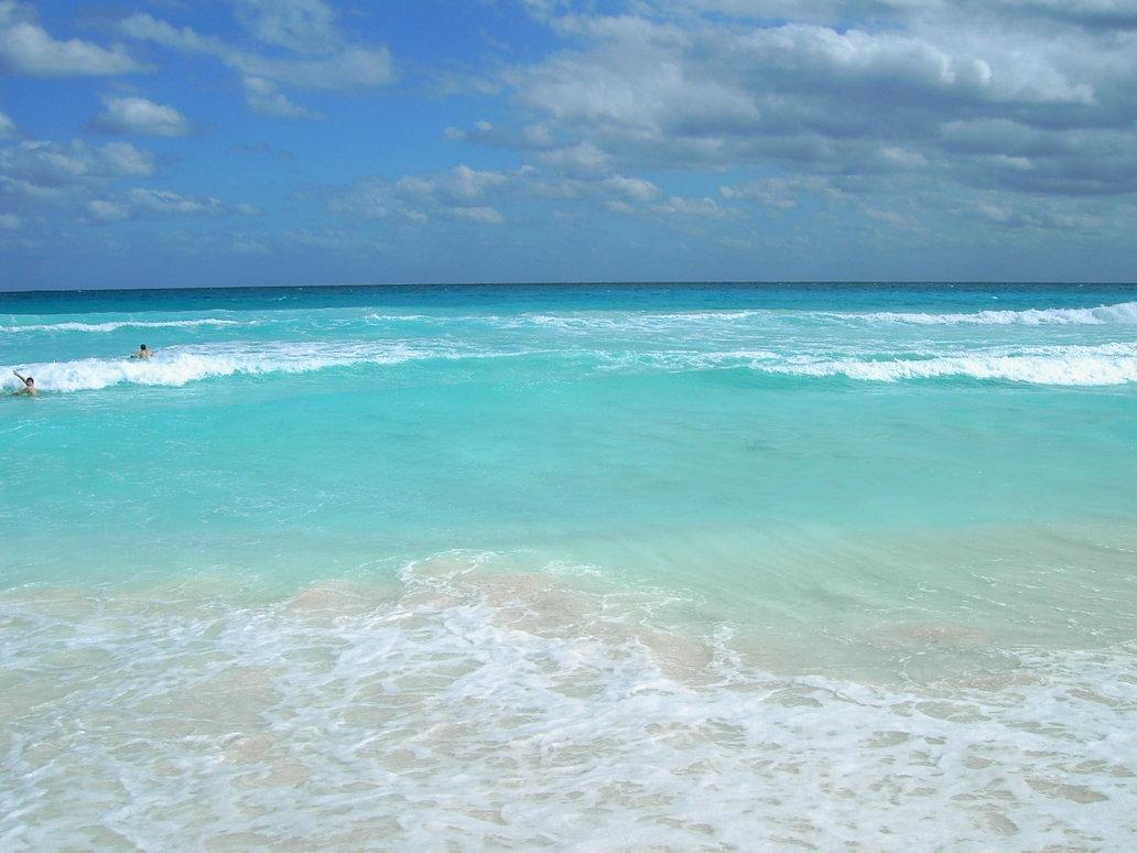 New Wonderful Ocean Inspirations
