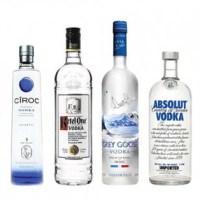 Los 10 Mejores Vodkas del Mundo