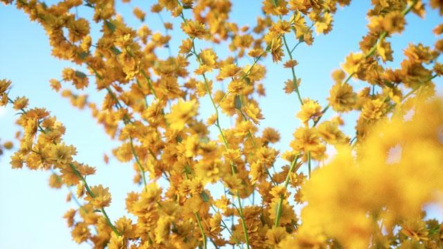 laubwerk plants kit 8 planiflora