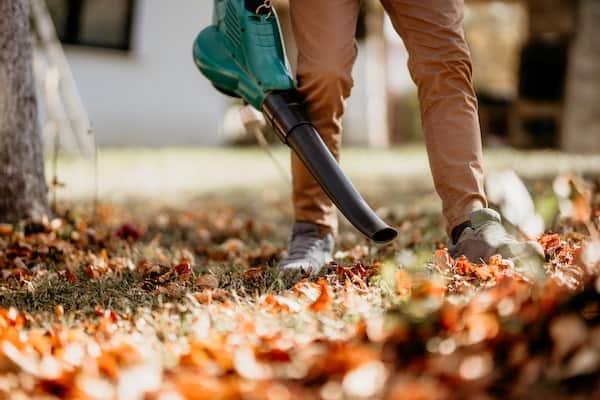 Leaf Blower Buyers Guide