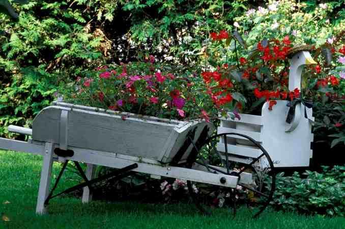 Best Wheelbarrow Planters