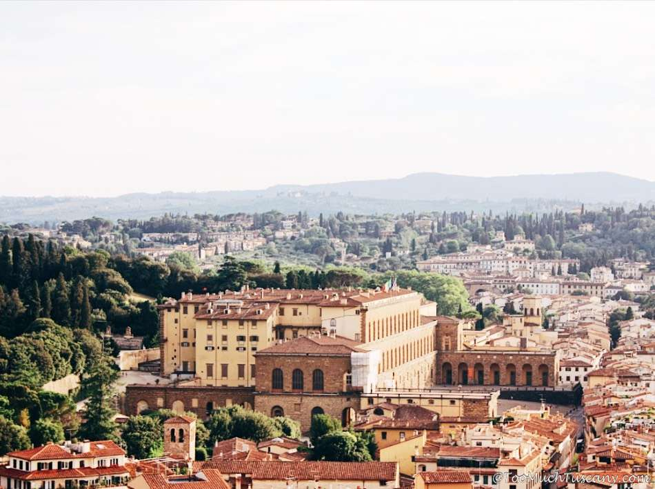 Pitti Palace and the Boboli Gardens from the Arnolfo Tower