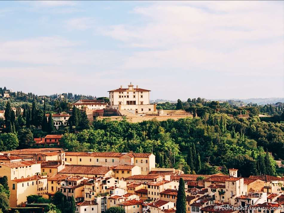 Forte Belvedere and the Boboli Gardens from the Arnolfo Tower