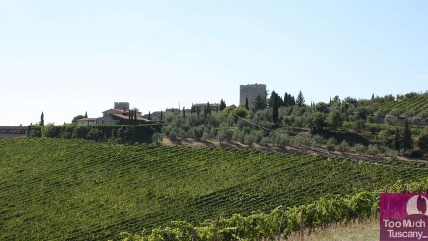 Castle of Vertine