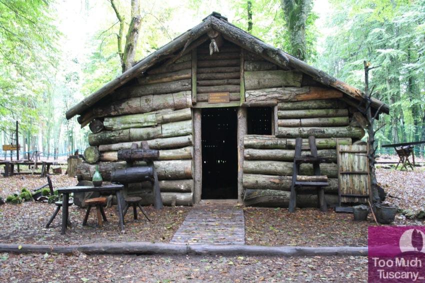 Lamberjack house in the Umbra forest