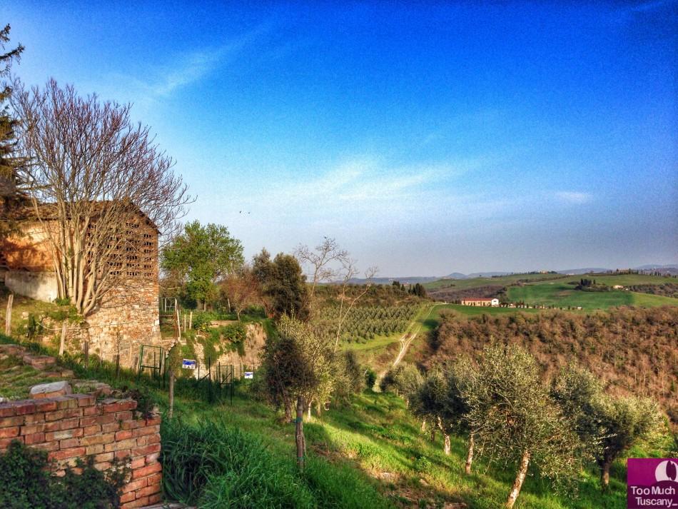 Valdorcia from Lucignano d'Asso