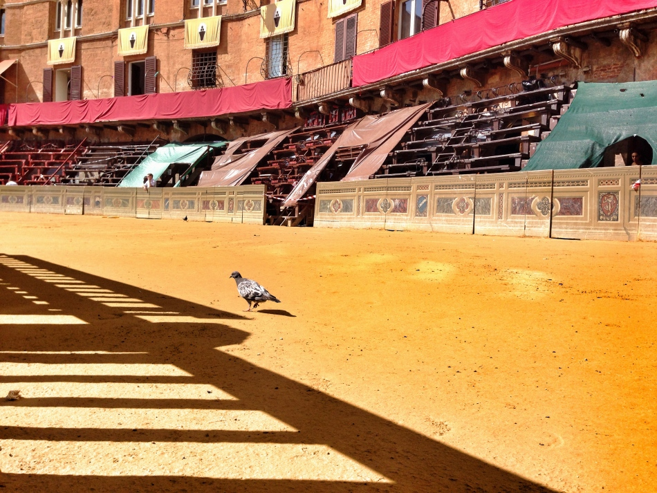 Waiting for the Palio in Piazza del Campo, Siena