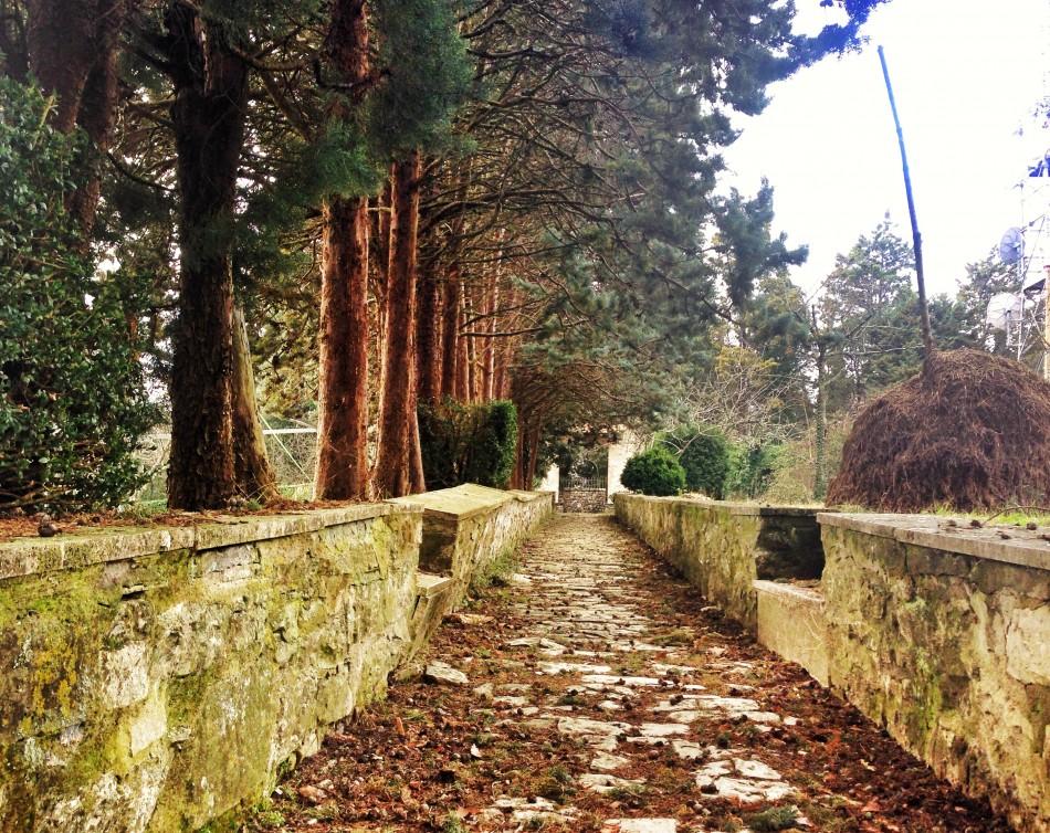 Way to the gardens at Convento dell'Incontro
