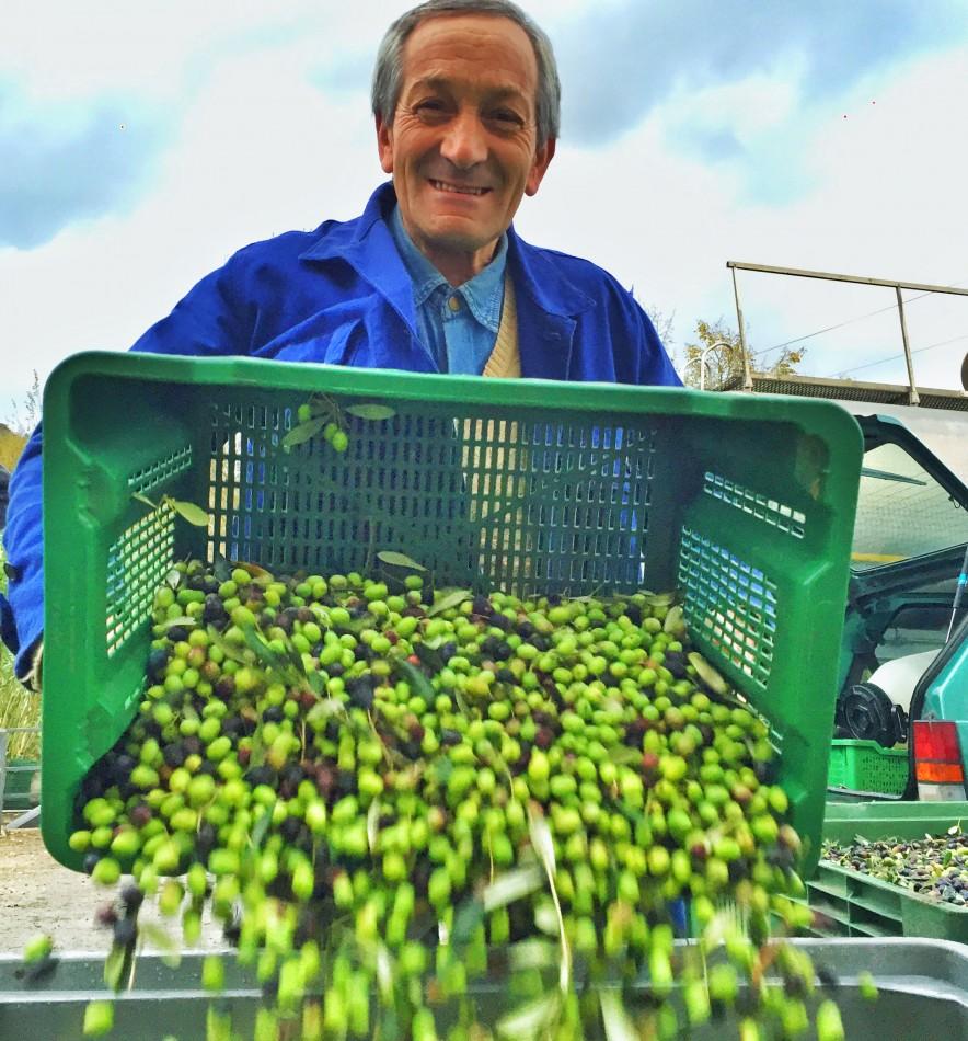 Olives mean love