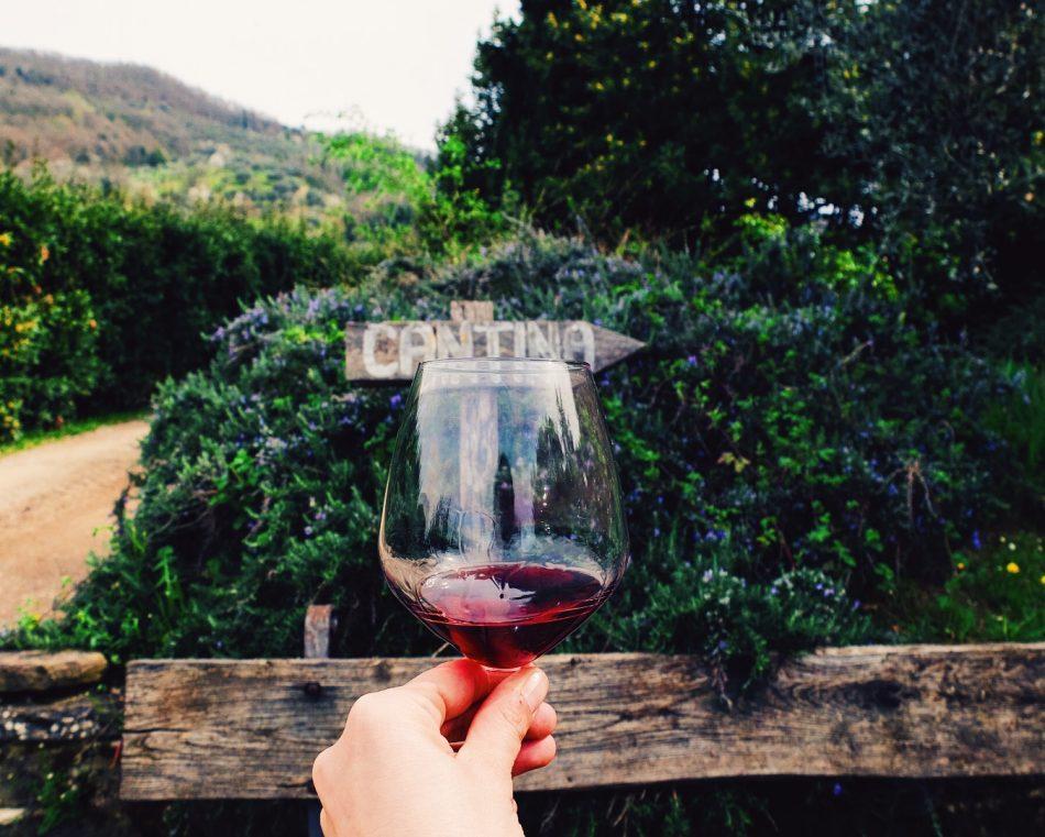 Frascole wine tasting