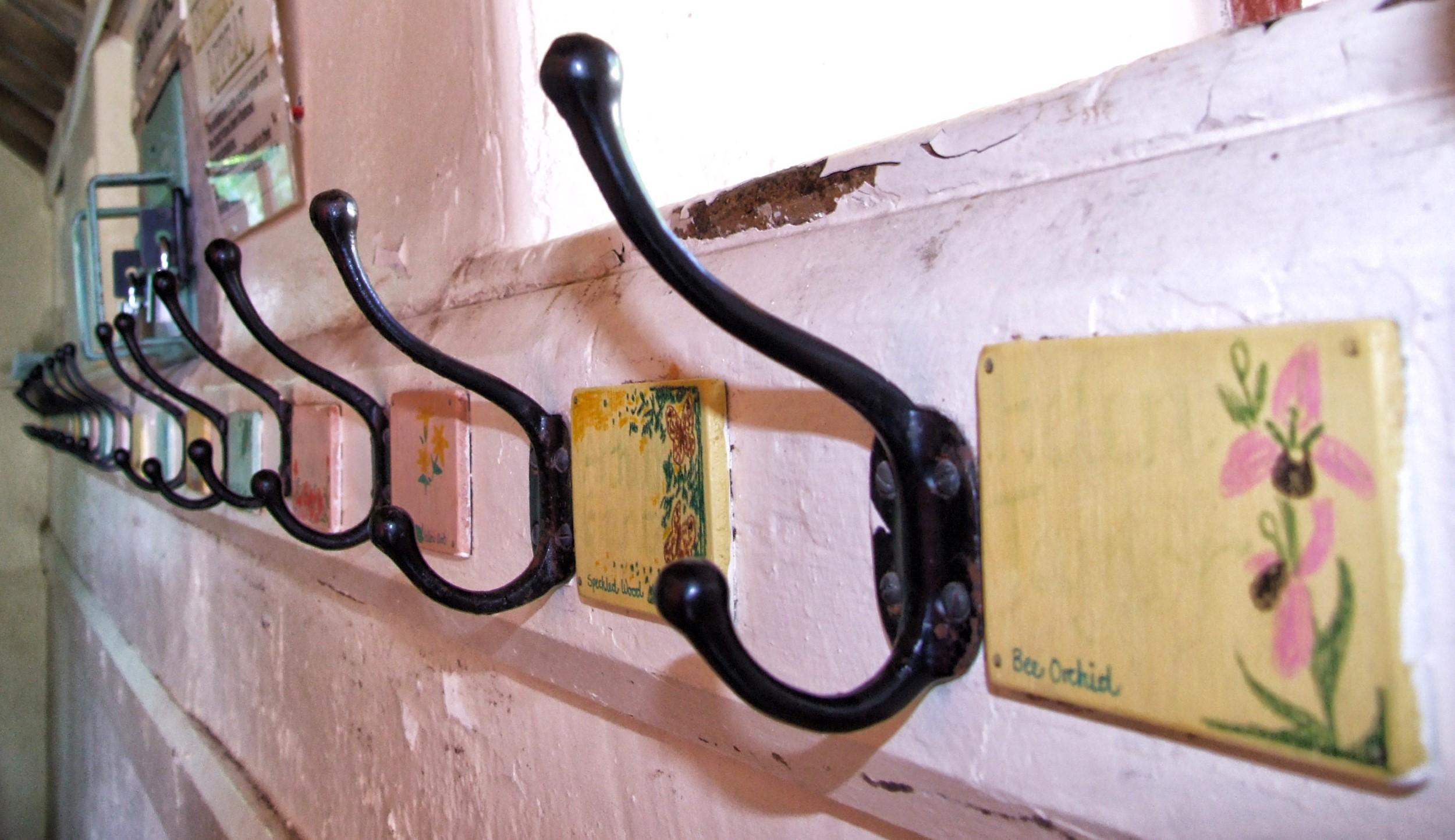 Row of coat hooks