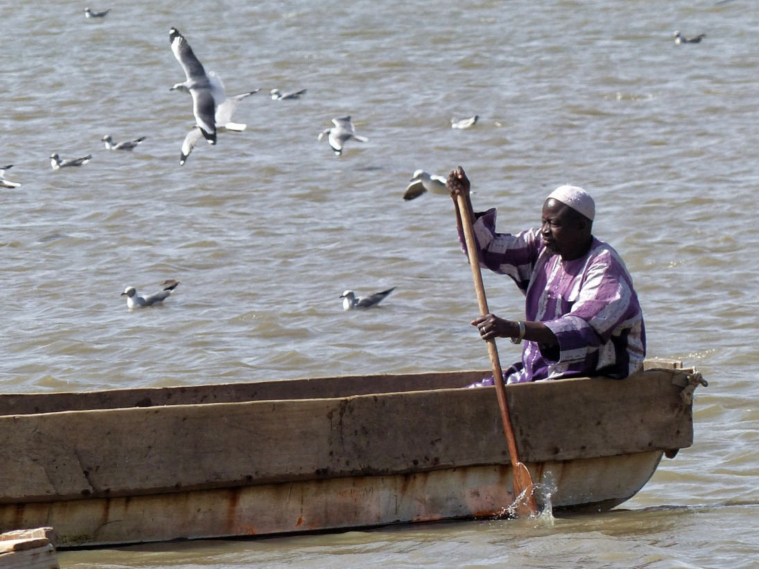 Man rowing a boat