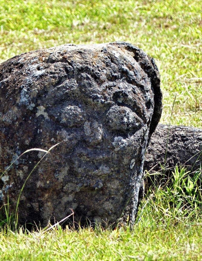 Petroglyph on a grey rock in the grass