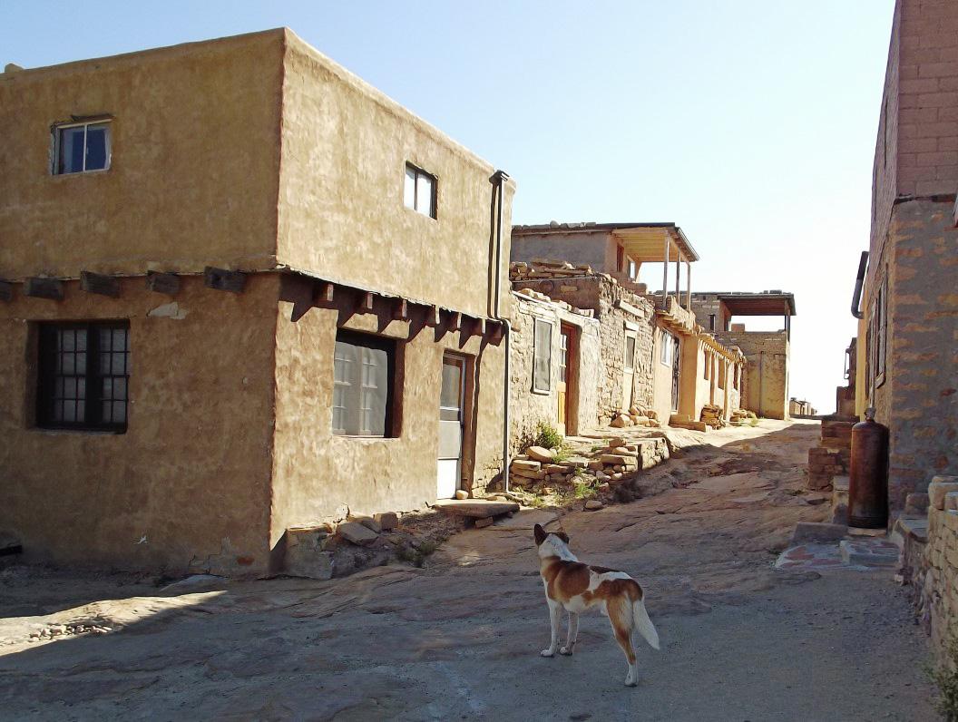 Street of adobe houses