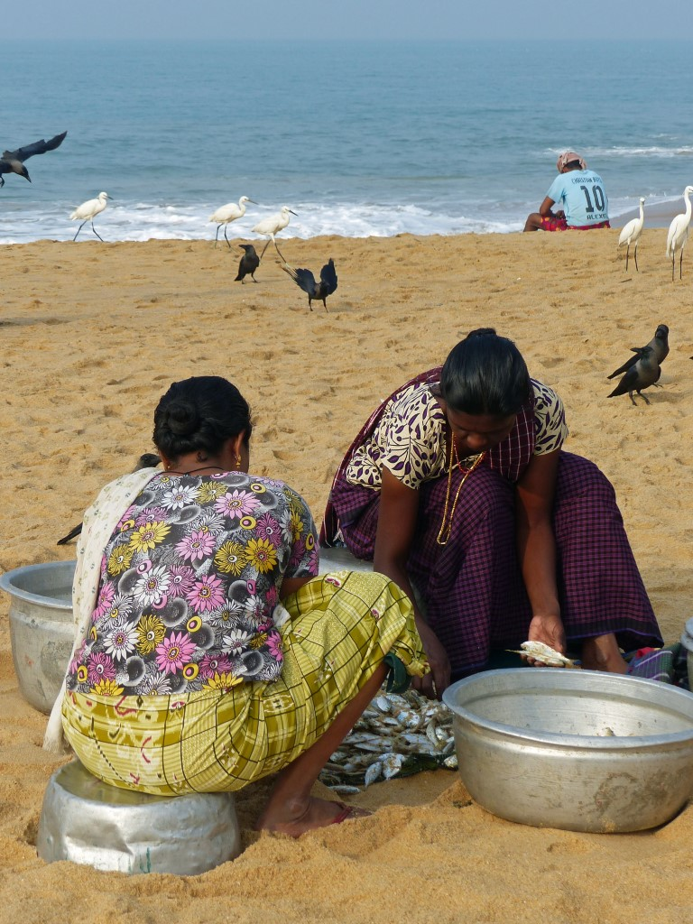 Two women sorting fish on a beach