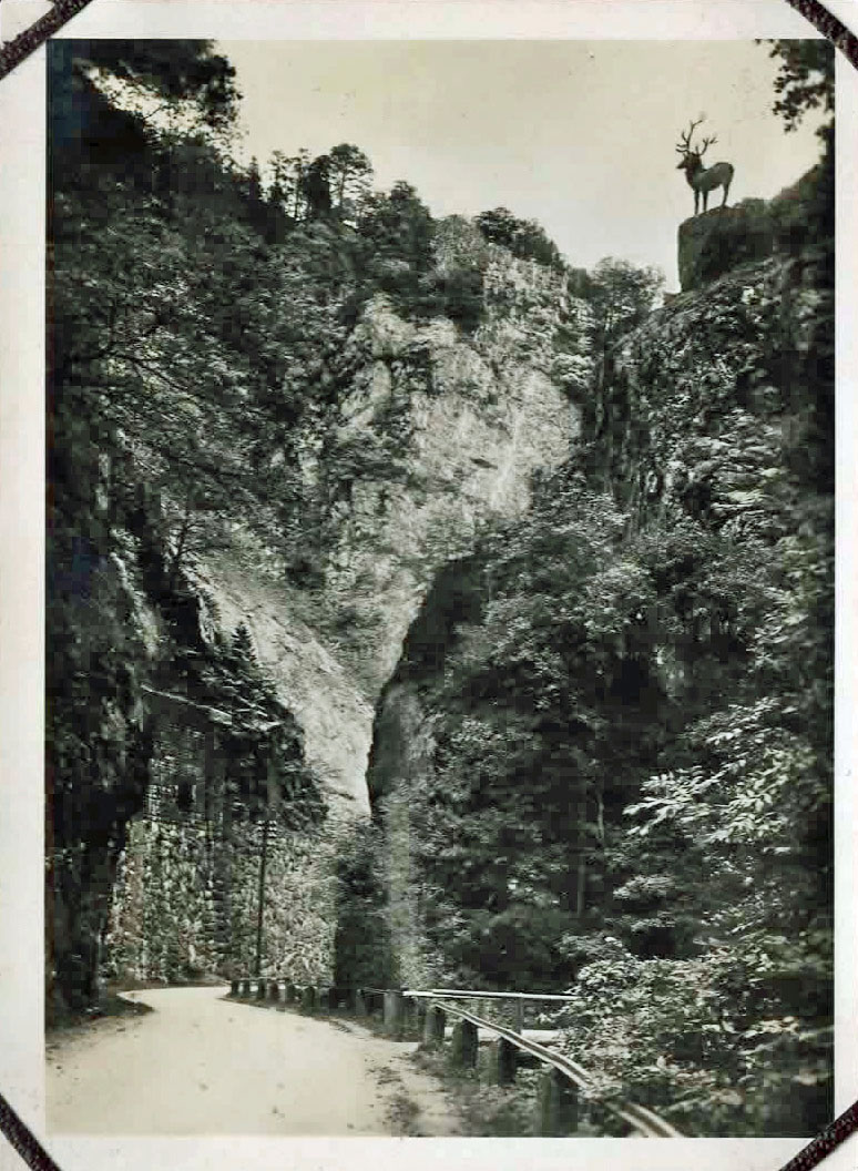 Old photo of a road through a gorge