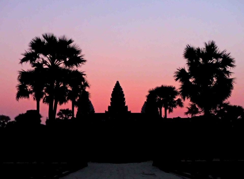Silhouette of building and palm trees against pink sky