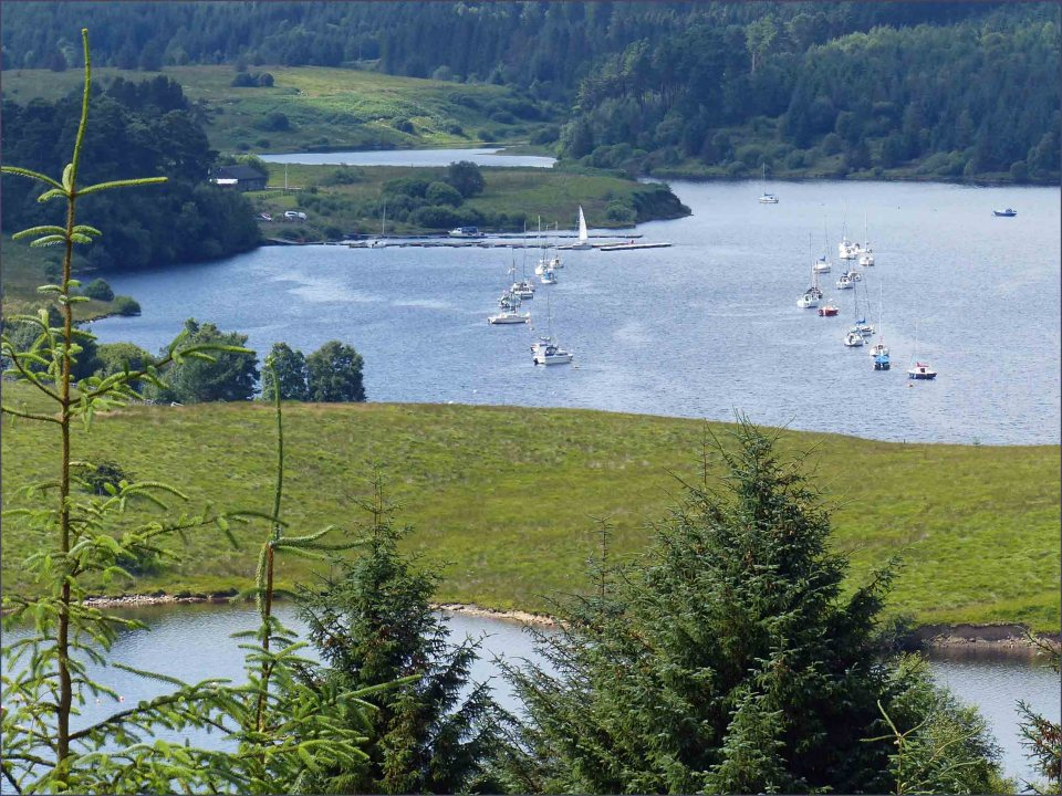 Small yachts moored in a bay surrounded by grass and trees