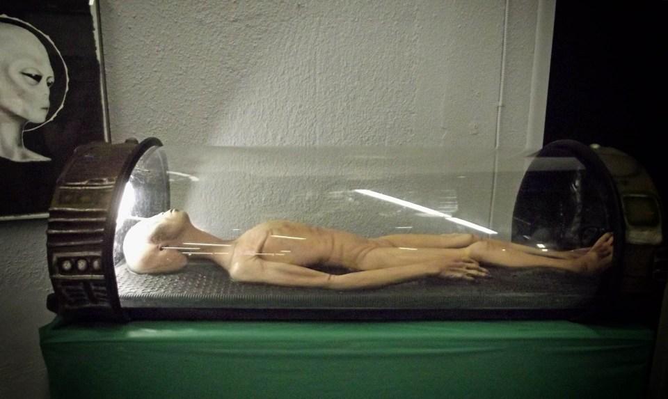 Model of alien lying in glass capsule
