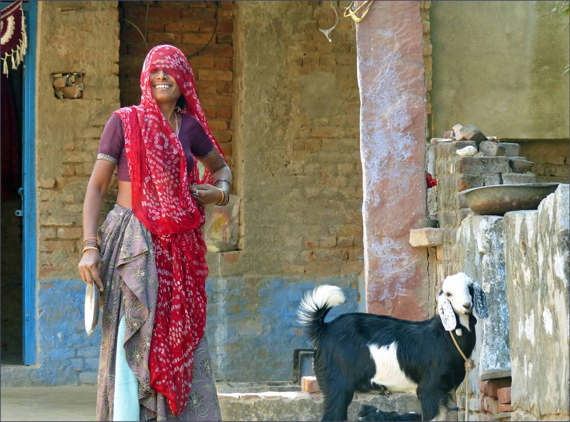 Lady in Indian dress with a goat