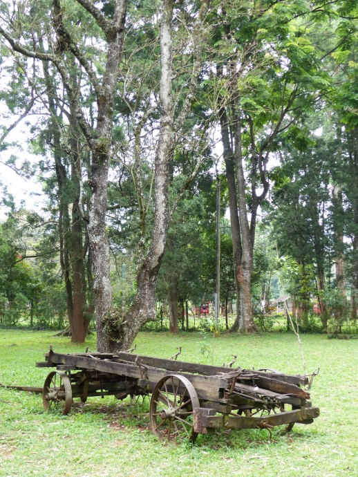 Broken wooden wagon