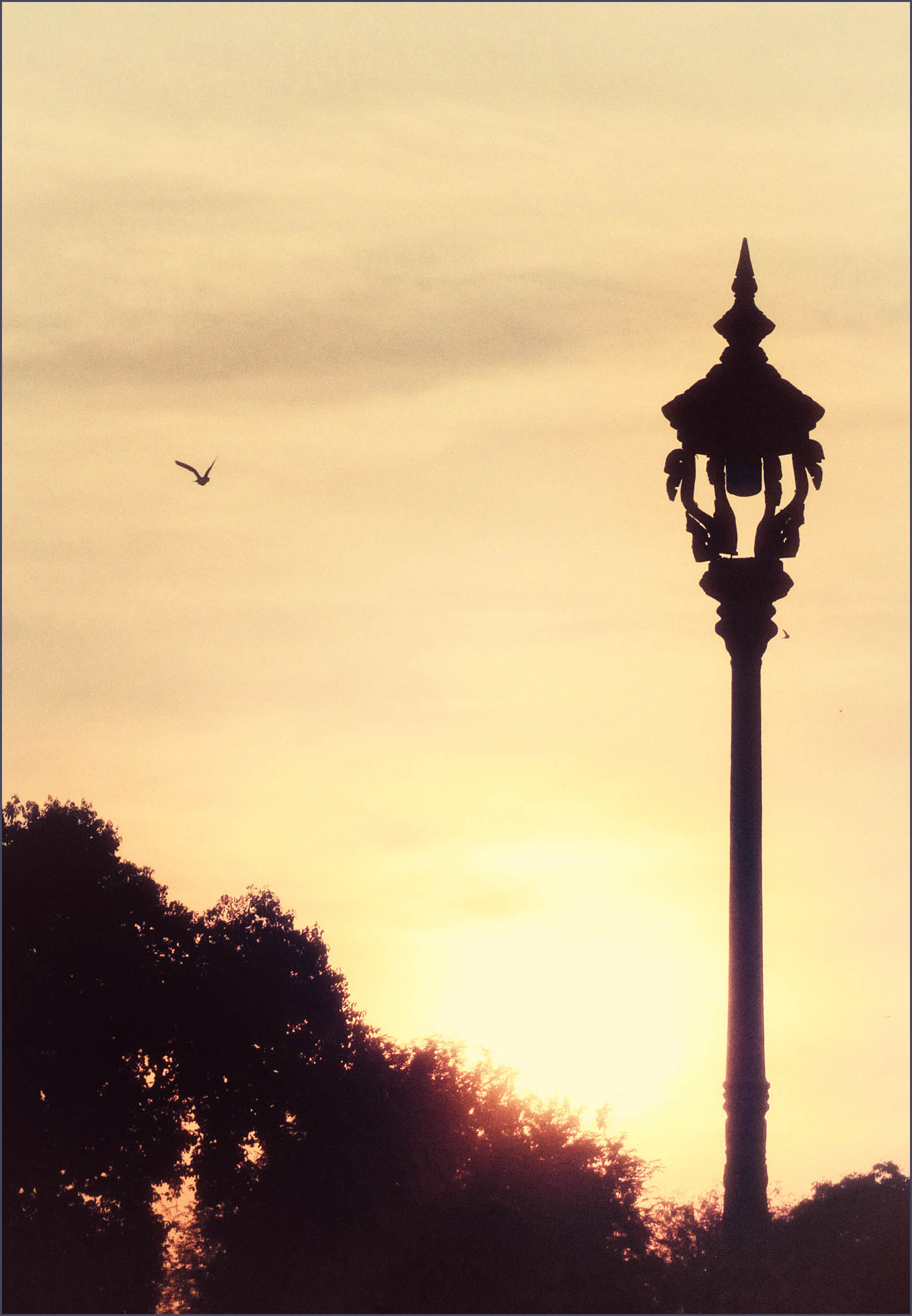 Sunset sky and lamppost
