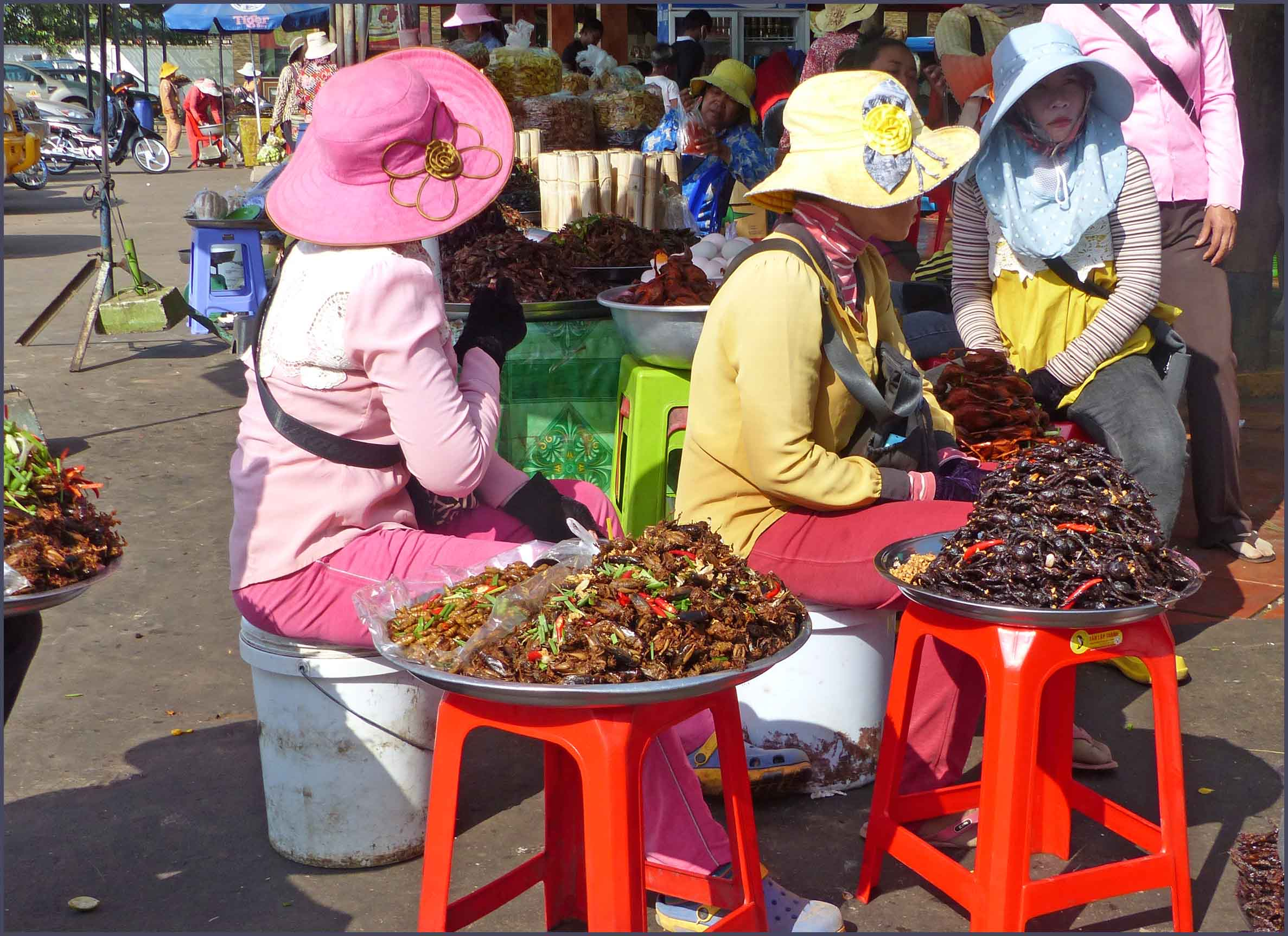 Ladies wearing sunhats sitting by plates of fried insects