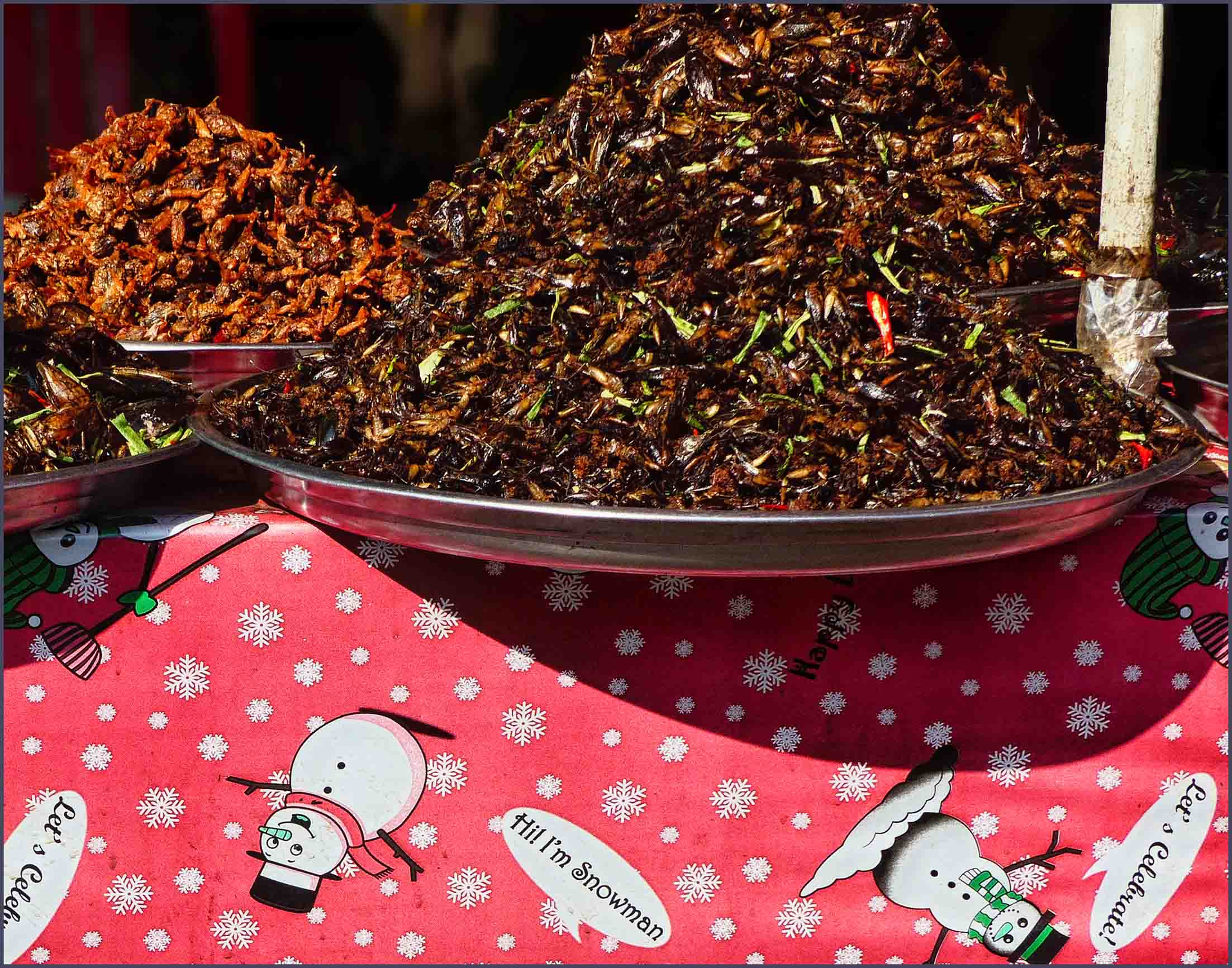 Plates of fried insects on a Christmas table cloth