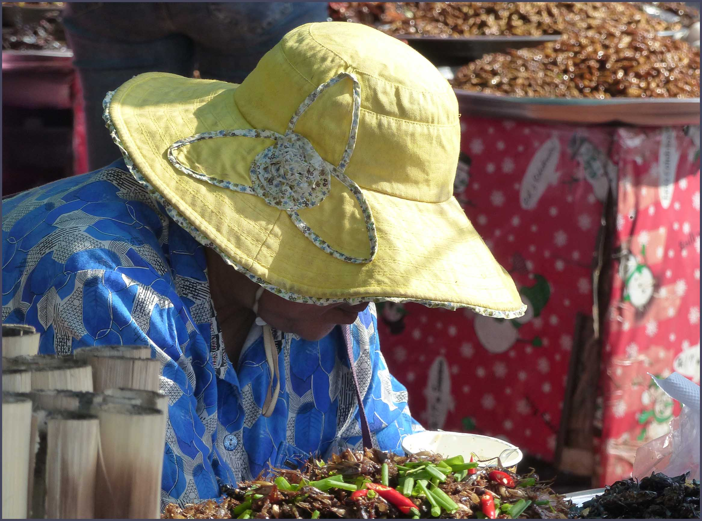 Lady in yellow sunhat at a market stall