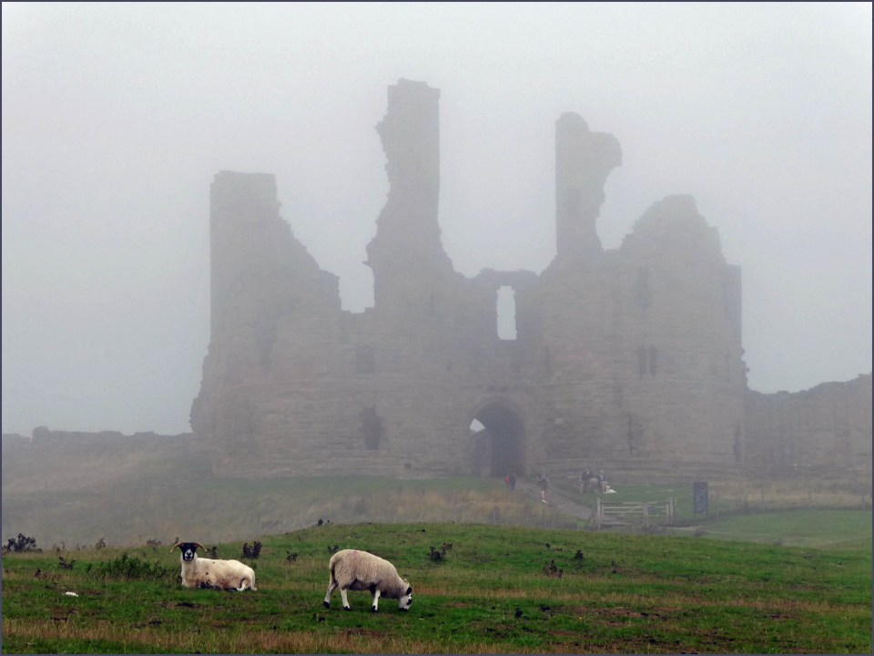 Misty castle ruins