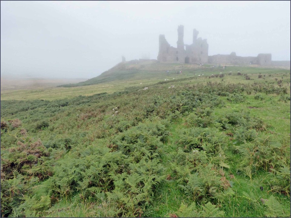 Misty view of distant castle