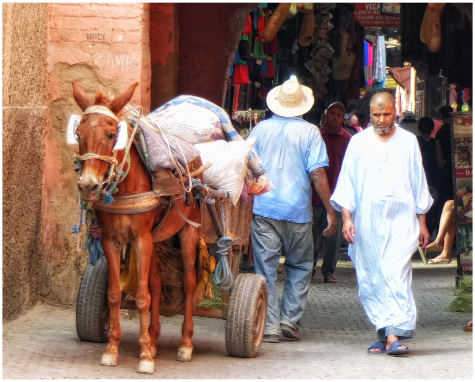Man and donkey cart in a narrow street